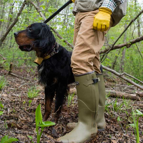 Gumleaf-Royal-Zip-Boots-are-great-for-Upland-Bird-Hunting