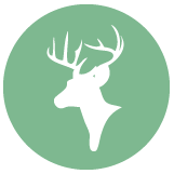 Deer Hunting Boots Icon